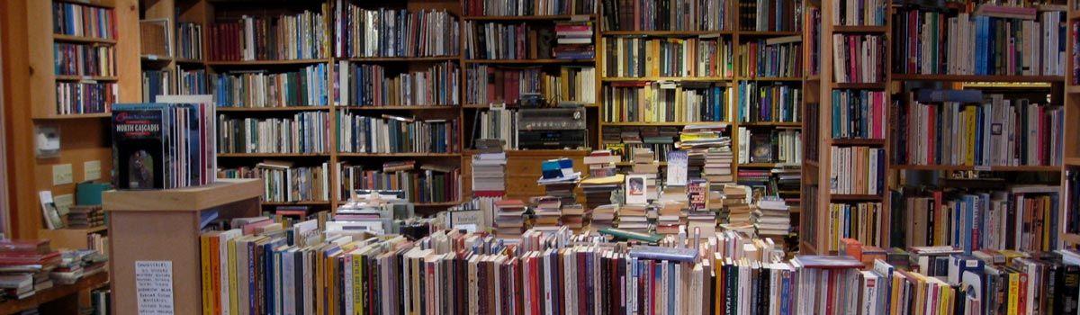 Las mejores novelas negras de 2016